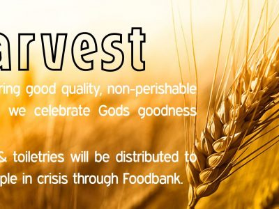 Harvest – Thankfulness